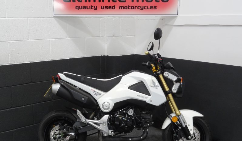 Honda MSX 125 Grom For Sale Here At Ultimate Moto Along With Other Motorcycles Direct From Our Showroom.